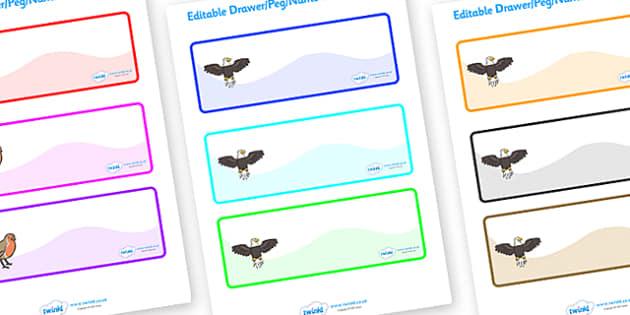 Editable Drawer - Peg - Name Labels (Eagles) - Eagle Label Templates, Resource Labels, Name Labels, Editable Labels, Drawer Labels, Coat Peg Labels, Peg Label, KS1 Labels, Foundation Labels, Foundation Stage Labels, Teaching Labels