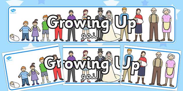 لوحة عرض عن النمو - بانر، النمو، مراحل النمو، موارد تعليمية