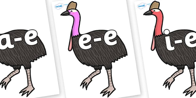 Modifying E Letters on Cassowary - Modifying E, letters, modify, Phase 5, Phase five, alternative spellings for phonemes, DfES letters and Sounds