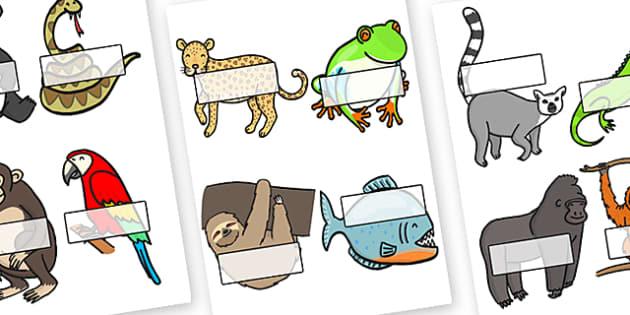 Editable Self Registration Labels (Jungle & Rainforest) - Self registration, register, Jungle, Rainforest, editable, labels, registration, child name label, printable labels, vines, A4, display, snake, forest, ecosystem, rain, humid, parrot, monkey,