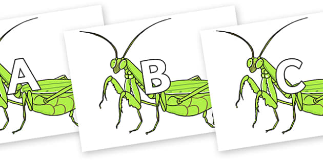 A-Z Alphabet on Praying Mantis - A-Z, A4, display, Alphabet frieze, Display letters, Letter posters, A-Z letters, Alphabet flashcards