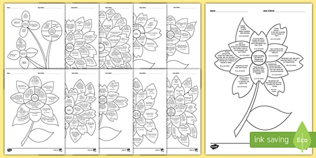 EYFS Nursery (FS1) Assessment Flowers