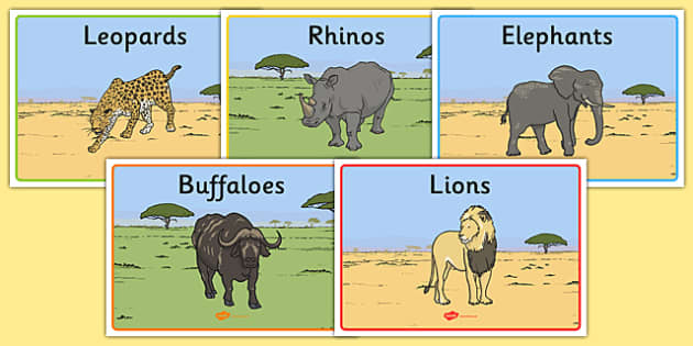 The Big Five African Animals Class Group Signs -