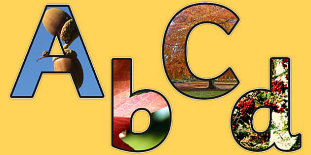 Autumn Themed Photo Display Lettering - autumn, display, letters
