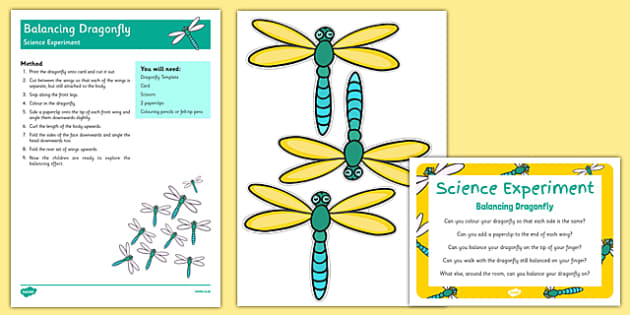 Balancing Dragonfly Science Experiment And Prompt Card Pack - minibeasts, minibeast, centre of gravity