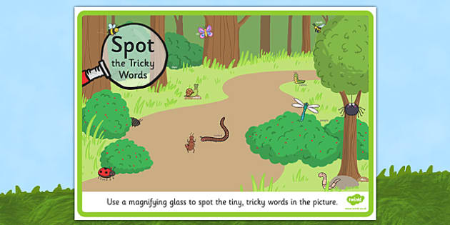 Phase 5 Tricky Words Minibeasts Scene Magnifying Glass Activity Sheet - phase 5, tricky words, magnifying glass, activity, minibeasts, scene, poster, display, worksheet