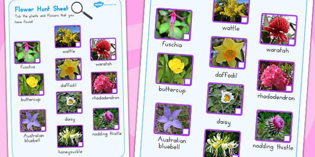 Flowers Hunt Sheet - worksheets, worksheet, flower, activity