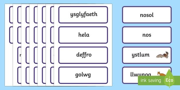 Anifeiliaid Nosol Cardiau Fflach Geiriau - nosol, anifeiliaid, cardiau, fflach, darllen, gaeaf, cysgu, deffro, Welsh