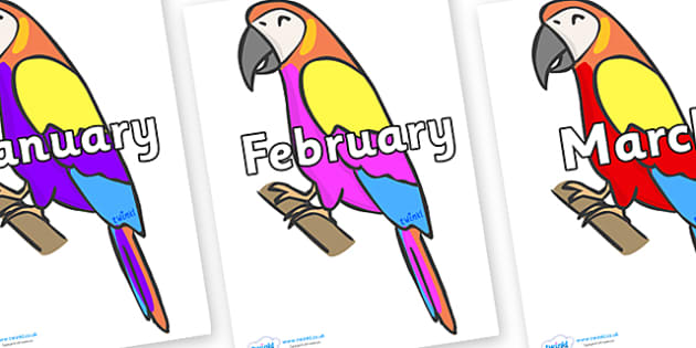 Months of the Year on Macaws - Months of the Year, Months poster, Months display, display, poster, frieze, Months, month, January, February, March, April, May, June, July, August, September