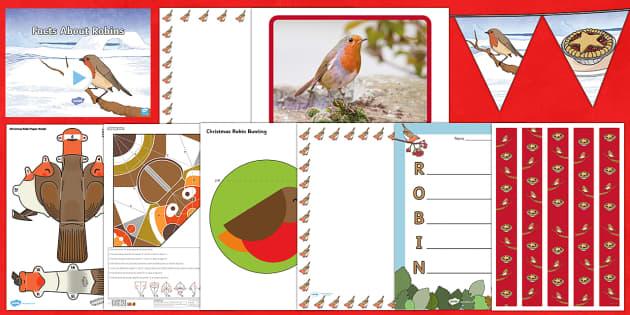 KS2 Robins Resource Pack - robin, robins, christmas, festive, birds, display