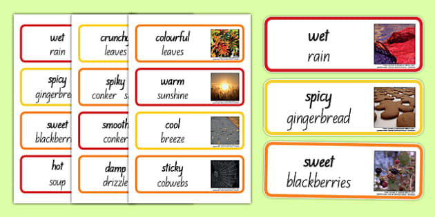 Autumn Senses Word Cards - nz, new zealand, autumn, senses, word cards, word, cards, season