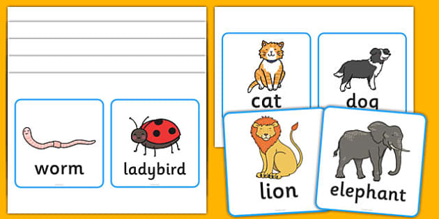Vertebrates Or Invertebrates Cards - vertebrate, invertebrate, cards, word cards, flashcards, activity, vertebrate or invertebrate, game, matching, animals, animal, types, different