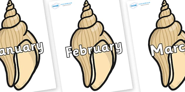 Months of the Year on Conch Shells - Months of the Year, Months poster, Months display, display, poster, frieze, Months, month, January, February, March, April, May, June, July, August, September