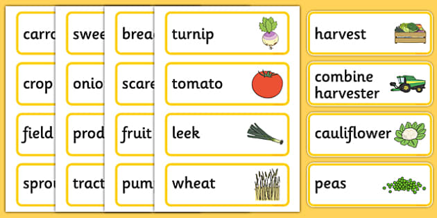 Harvest Pre-Teaching Word Cards - harvest, pre-teaching, word cards