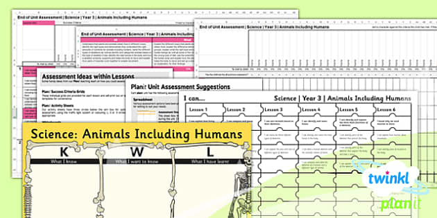 PlanIt - Science Year 3 - Animals Including Humans Unit Assessment Pack - animals, humans, science, 2014, curriculum, planning, assessment