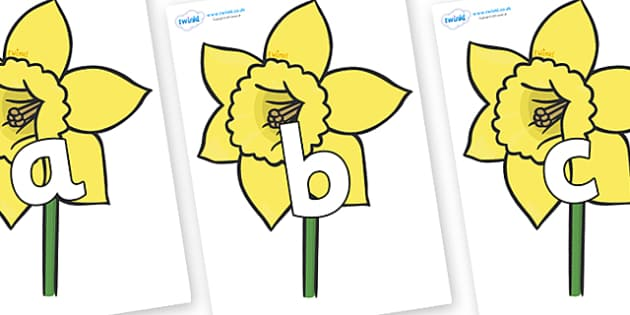 Phoneme Set on Daffodils - Phoneme set, phonemes, phoneme, Letters and Sounds, DfES, display, Phase 1, Phase 2, Phase 3, Phase 5, Foundation, Literacy
