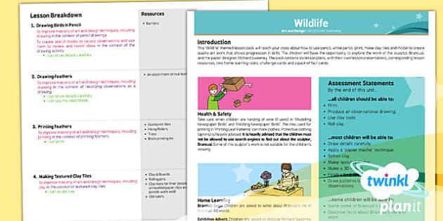 PlanIt - Art UKS2 - Wildlife Birds Planning Overview - art, lesson, plan