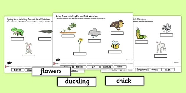 Spring Scene Labelling Cut and Stick Worksheet - spring, cut