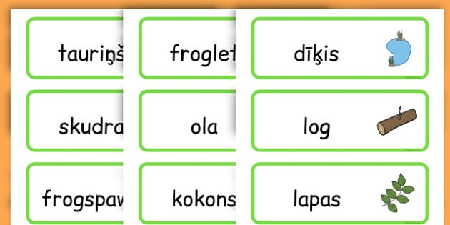 Life Cycle Word Cards - life cycles, lifecycle, visual aid, words - Latvian