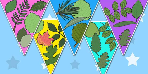 Leaf Bunting - leaf, flowers, plants, leaves, growth, display