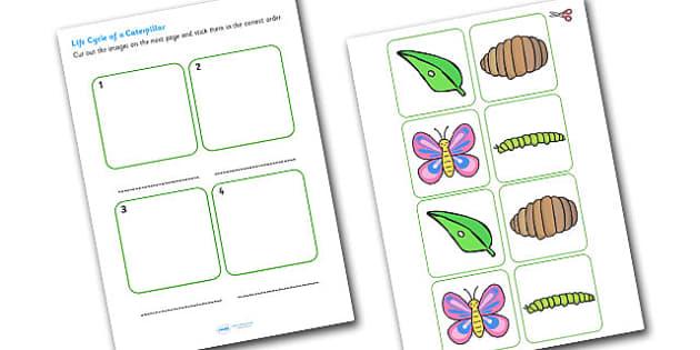 Caterpillar Life Cycle Cut and Stick Worksheet EYFS - caterpillar, life cycle, cut and stick, cut, ctick, cut out, cut-out, cutouts, worksheets, EYFS
