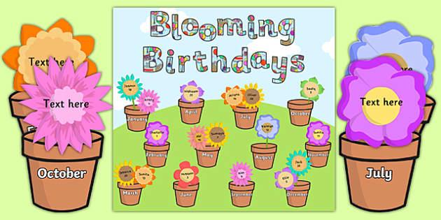 Blooming Birthdays Flower Display Pack - birthdays, display, pack