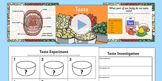Science Senses 5 Tastes PowerPoint and Worksheets Teaching Pack - science, senses, tastes, powerpoint, pack