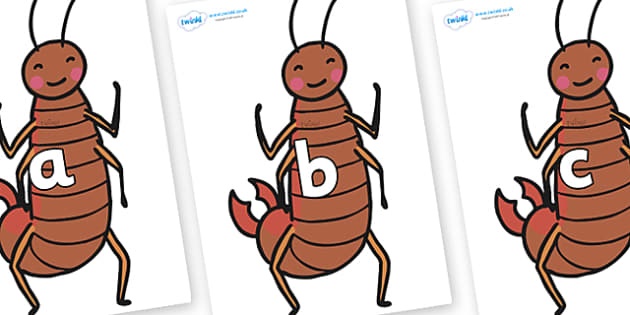 Phase 2 Phonemes on Earwigs - Phonemes, phoneme, Phase 2, Phase two, Foundation, Literacy, Letters and Sounds, DfES, display