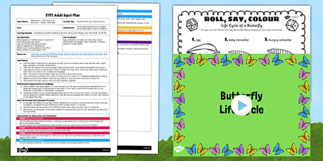 Butterfly Roll Say Colour Activity EYFS Adult Input Plan and Resource Pack - plans