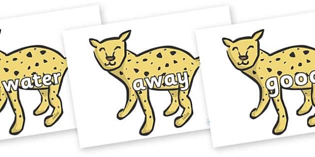 Next 200 Common Words on Cheetahs - Next 200 Common Words on  - DfES Letters and Sounds, Letters and Sounds, Letters and sounds words, Common words, 200 common words