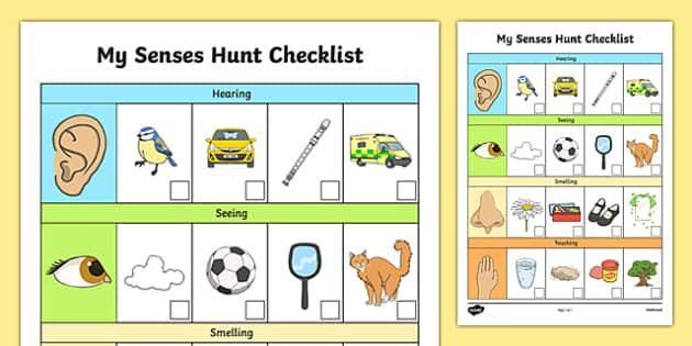 EYFS My Senses Hunt Checklist