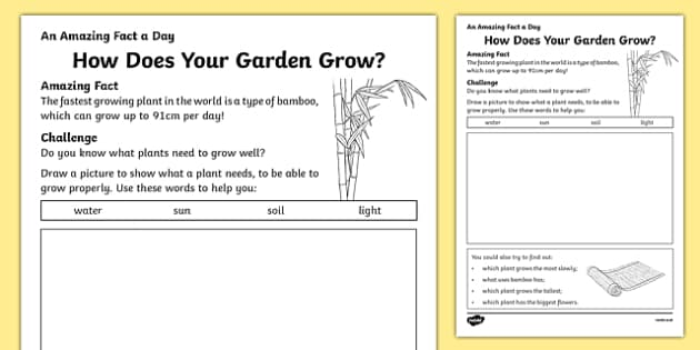 How Does Your Garden Grow? Activity Sheet, worksheet