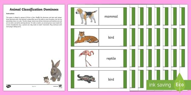 CfE Animal Classification Dominoes-Scottish - Science dominoes, science games, vertebrates, animal classification, biodiversity and interdependenc