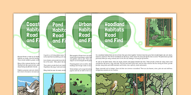 British Habitats Read and Find Activity - british habitat, read, find, activity