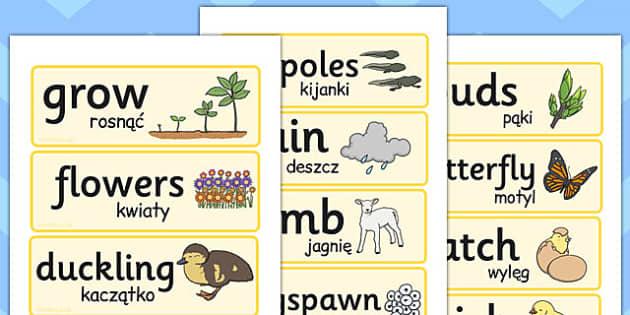 Spring Word Cards Polish Translation - seasons, season, literacy