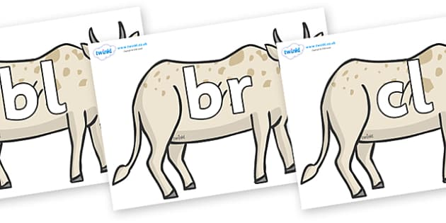 Initial Letter Blends on African Ox - Initial Letters, initial letter, letter blend, letter blends, consonant, consonants, digraph, trigraph, literacy, alphabet, letters, foundation stage literacy