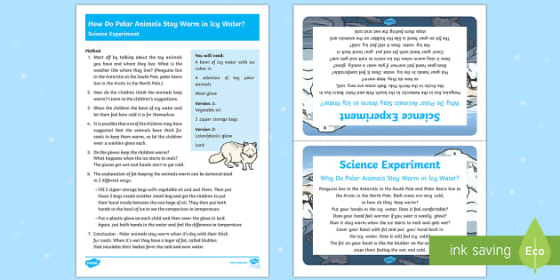 How Do Polar Animals Stay Warm in Icy Water? Science Experiment - how, polar, animals, warm, icy water, science, experiment