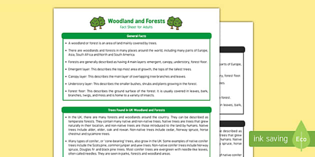 Woodland and Forests Fact Sheet for Adults - EYFS, Early Years, KS1, woods, forests, woodlands, parks, animals, nature, wildlife, British wildlife