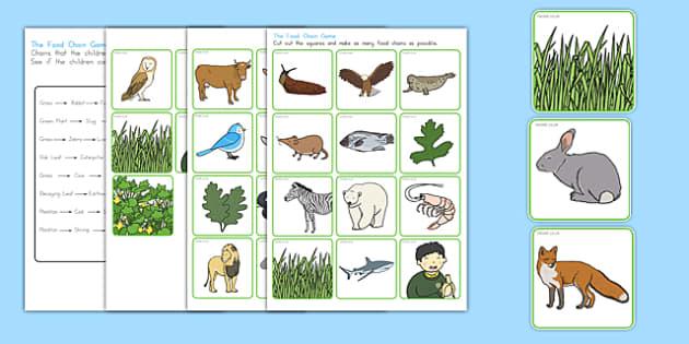 Food Chain Sorting Game - australia, food chain, sorting, game
