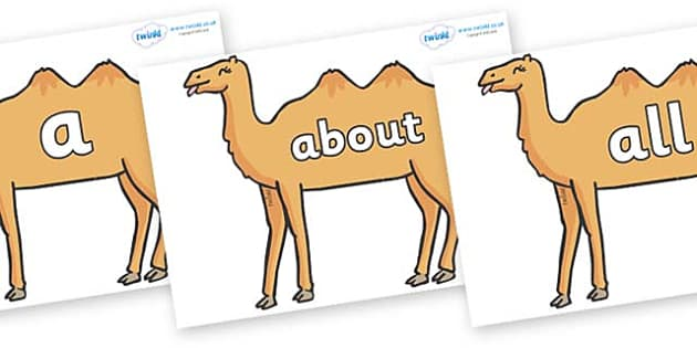 100 High Frequency Words on Camels - High frequency words, hfw, DfES Letters and Sounds, Letters and Sounds, display words