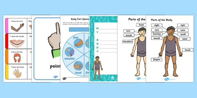 Top Ten My Body  Activity Pack - My body, myself, all about me, body parts