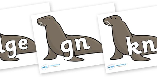 Silent Letters on Sealions - Silent Letters, silent letter, letter blend, consonant, consonants, digraph, trigraph, A-Z letters, literacy, alphabet, letters, alternative sounds