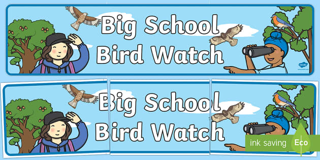 Big School Bird Watch Banner - Banner, display, bird watch, birds, british wildlife, animals