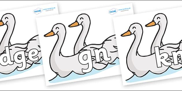 Silent Letters on Swans - Silent Letters, silent letter, letter blend, consonant, consonants, digraph, trigraph, A-Z letters, literacy, alphabet, letters, alternative sounds