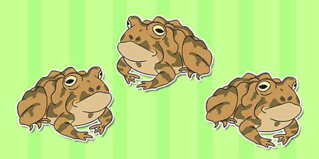 Editable Toad Display Cut Outs - editable, toad, display, cut outs
