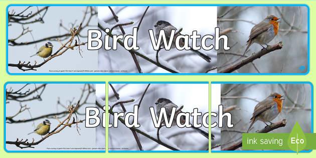 Bird Watch Photo Display Banner - bird, watch, photo, display