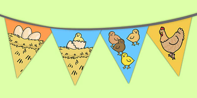 Chicken Life Cycle Bunting - chicken, lifecycle, bunting, display
