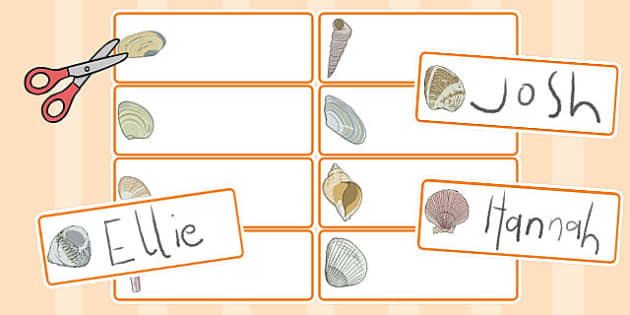 British Seashell Drawer Peg Name Labels - british, seashell