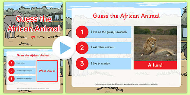 Guess the African Animal Activity PowerPoint - guess, animal, african, activity, powerpoint