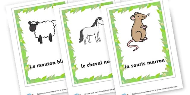 French Animal Flashcards - French Literacy Primary Resources,French,Languages,Literacy,Words